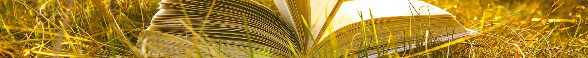 banner-inner-book